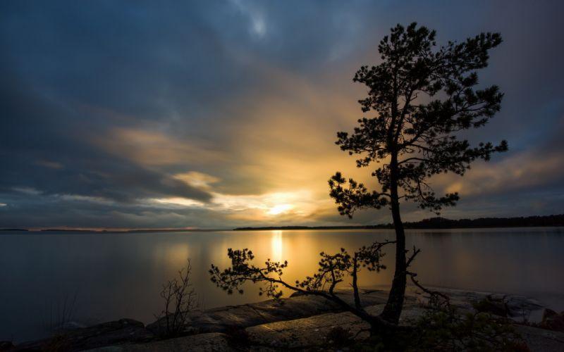 sunset landscapes nature trees lakes wallpaper