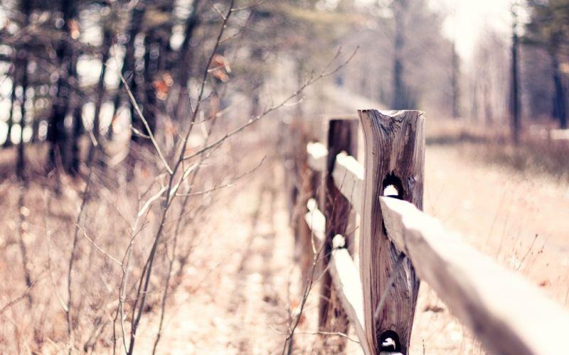 fences paths wallpaper