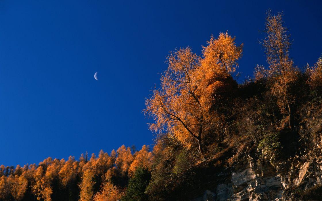 mountains Moon wallpaper