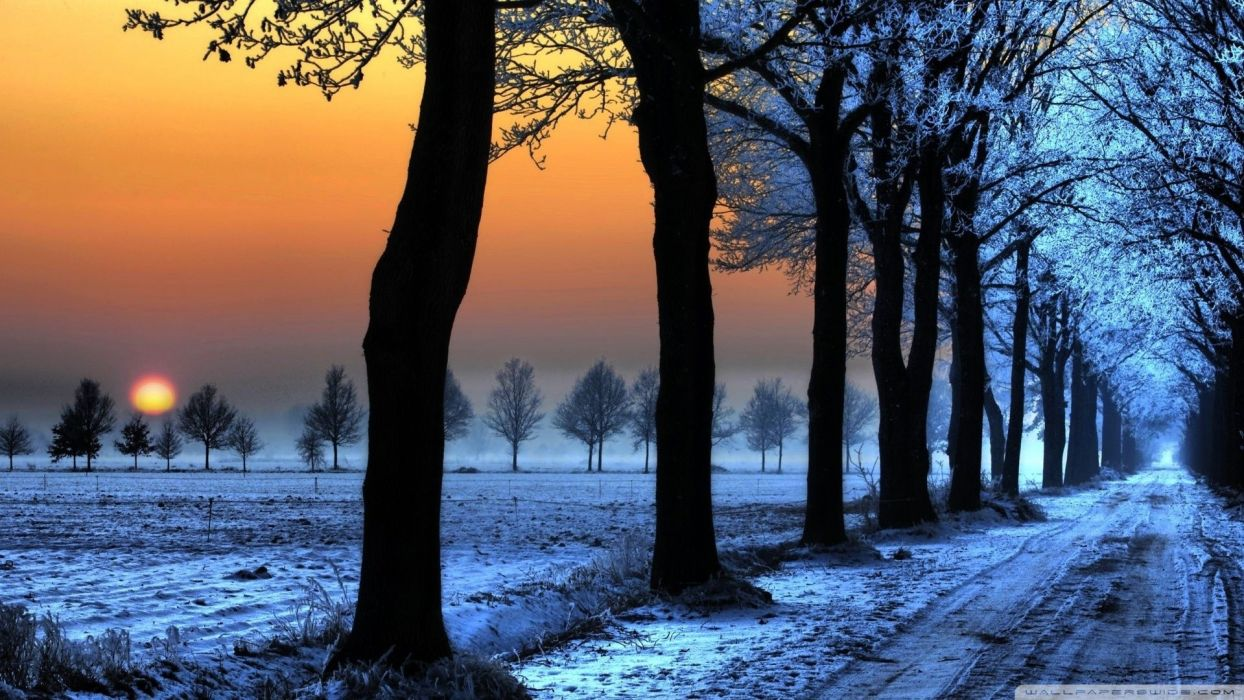 sunset nature winter snow wallpaper