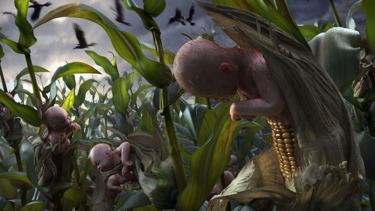 CHILDREN-OF-THE-CORN horror dark children corn   g wallpaper