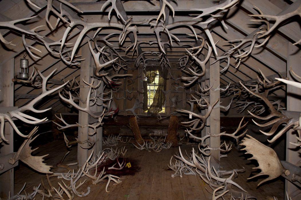 HANNIBAL drama horror television deer evil     h wallpaper