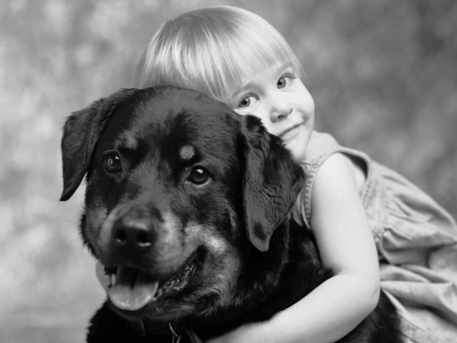 dogs grayscale monochrome friendship children wallpaper