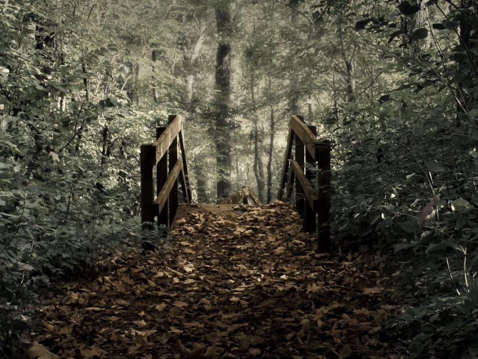 landscapes nature forests bridges photo manipulation wallpaper