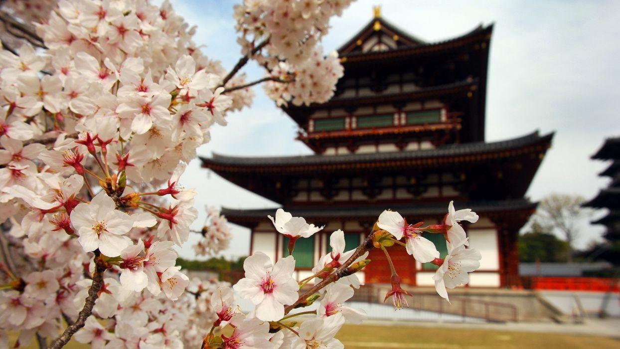 Japan landscapes cityscapes Japanese gardens temples japanese lantern wallpaper