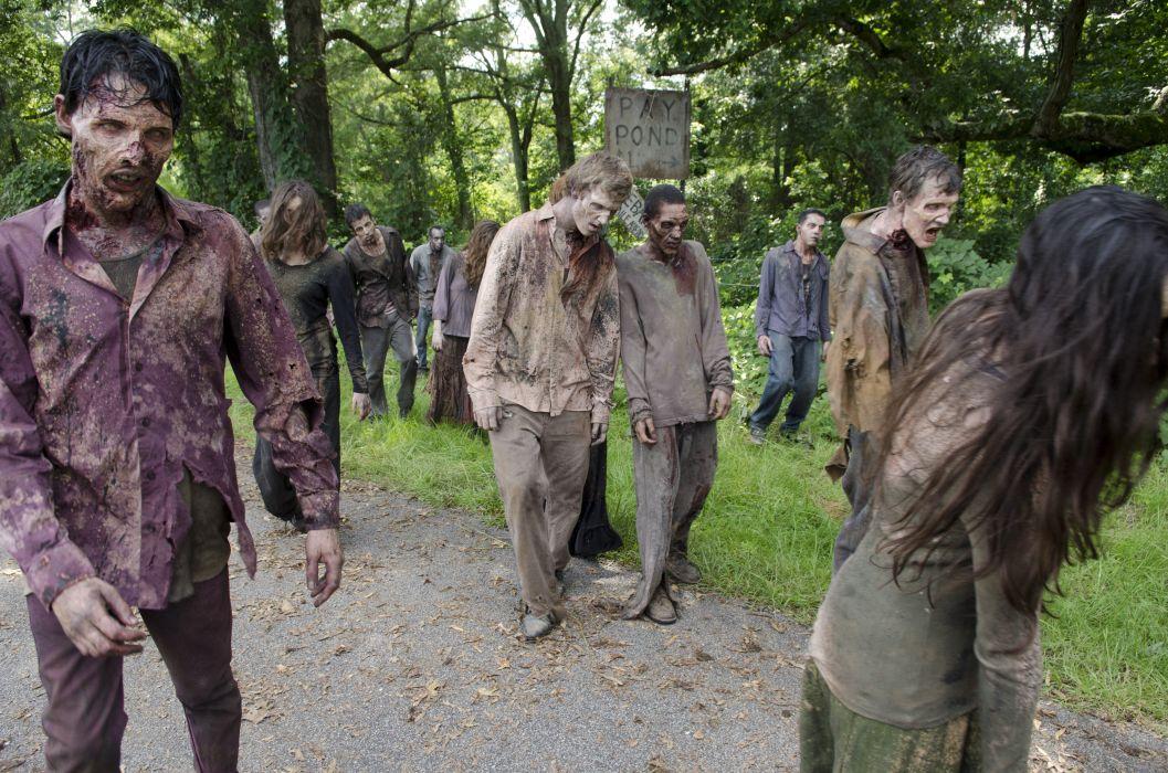 THE WALKING DEAD horror drama dark zombie    t wallpaper