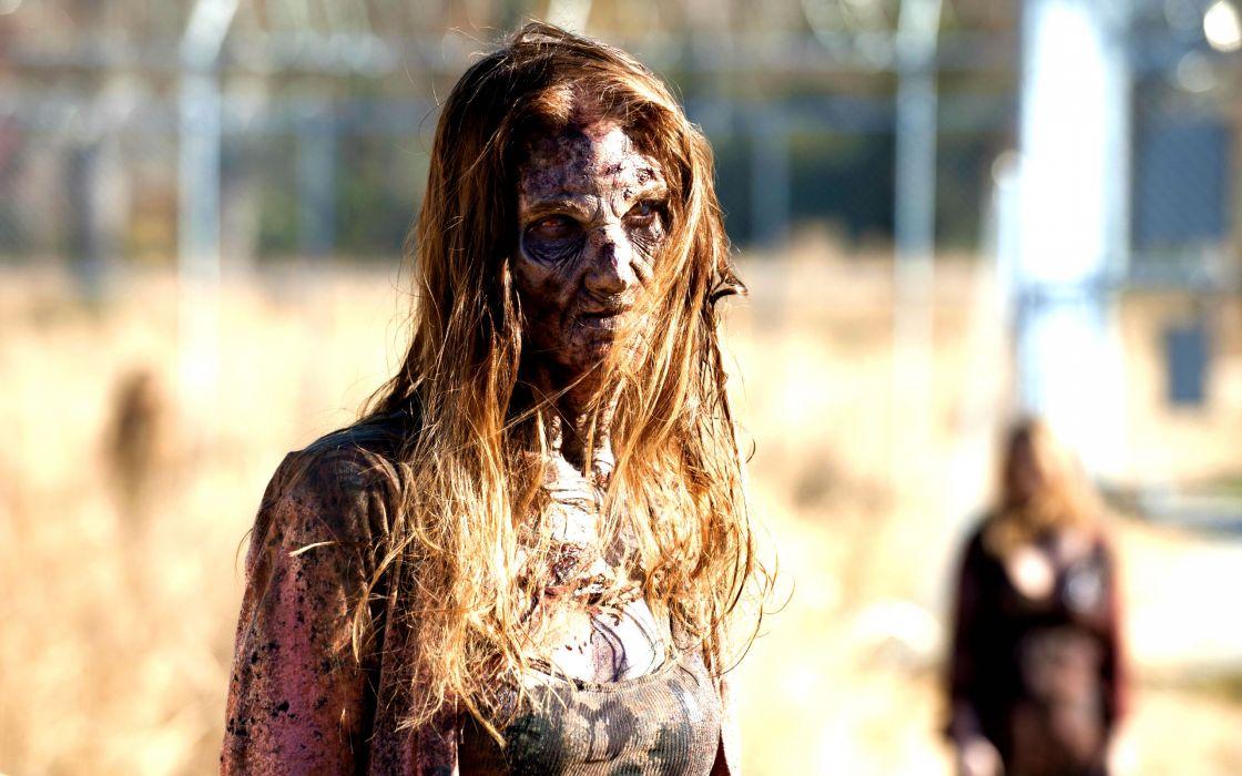 THE WALKING DEAD horror drama dark zombie  ds wallpaper
