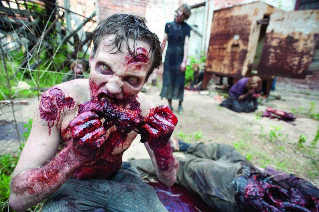 THE WALKING DEAD horror drama dark zombie blood     hd wallpaper