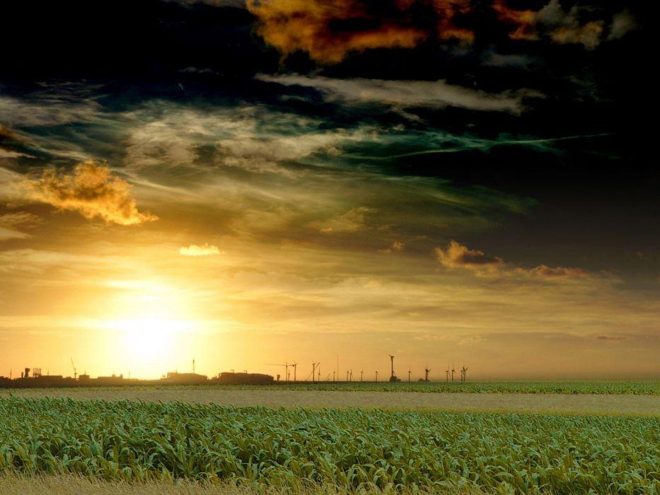sunset landscapes grass wallpaper
