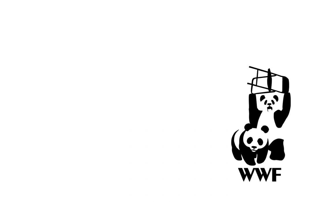 funny WWE World Wrestling Entertainment World Wildlife Fund wallpaper