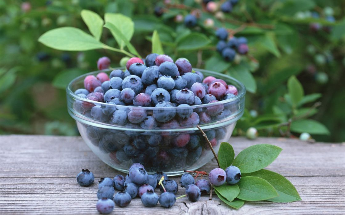 fruits berries blueberries wallpaper