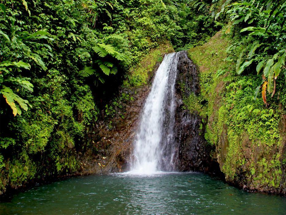 green nature trees waterfalls wallpaper