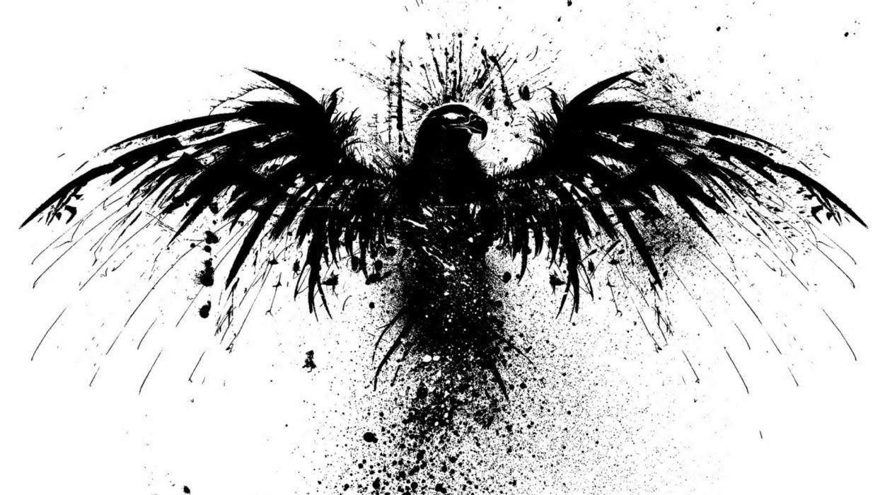 skull art fantasy head logo bird black hd wallpaper wallpaper