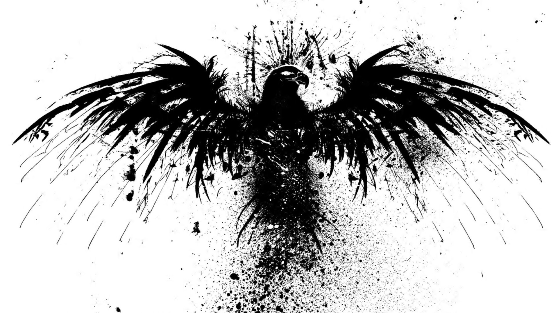 Skull art fantasy head logo bird black hd wallpaper ...