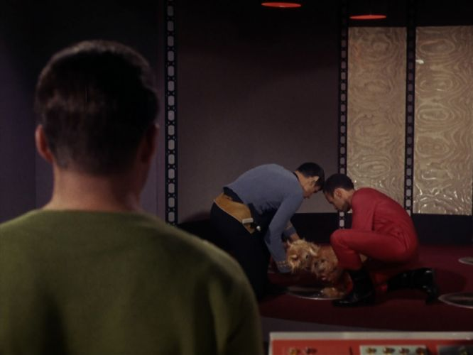 STAR TREK sci-fi action adventure television the-enemy-within (335) wallpaper