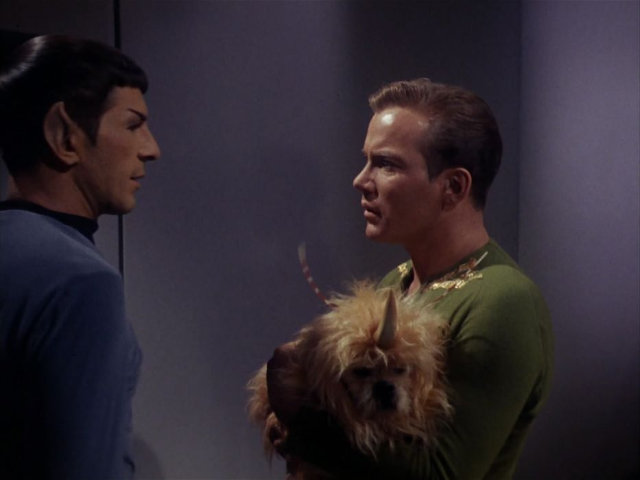 STAR TREK sci-fi action adventure television the-enemy-within (231) wallpaper