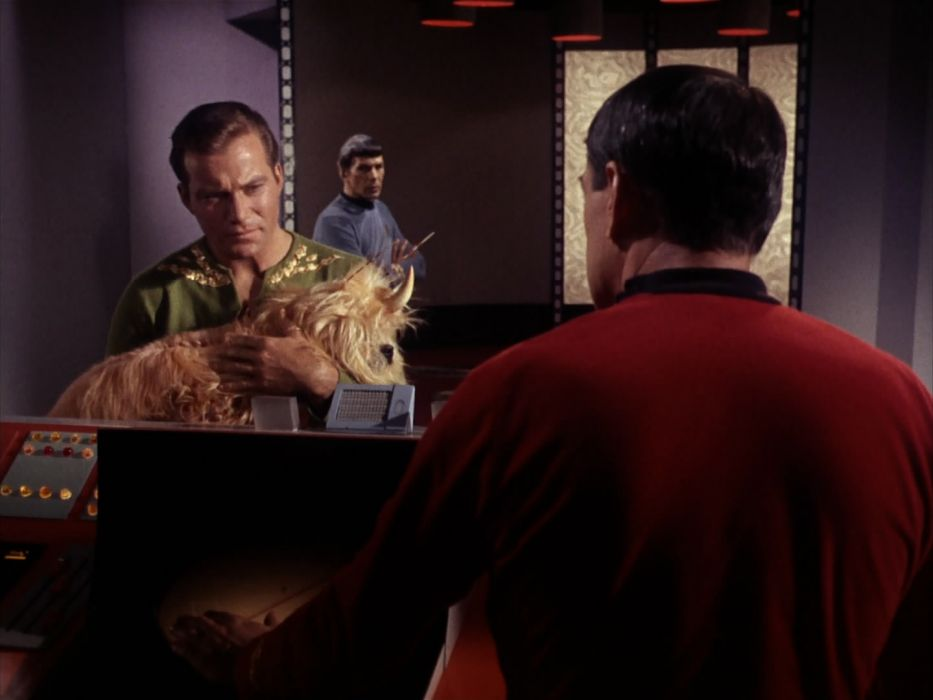 STAR TREK sci-fi action adventure television the-enemy-within (220) wallpaper