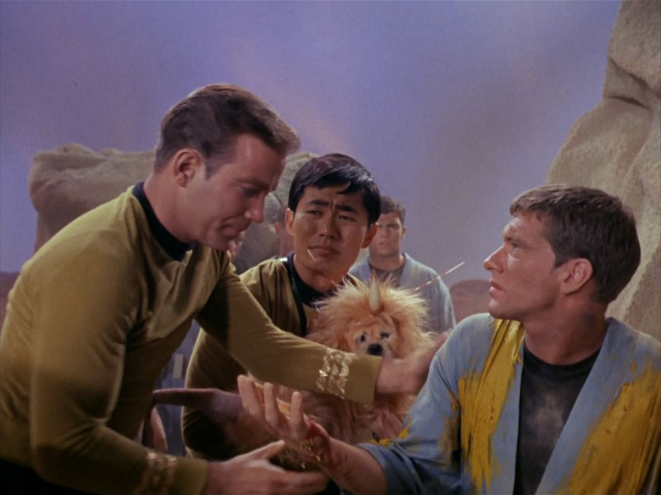 STAR TREK sci-fi action adventure television the-enemy-within (13) wallpaper