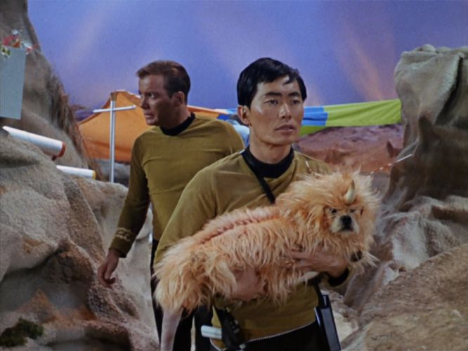 STAR TREK sci-fi action adventure television the-enemy-within (5) wallpaper