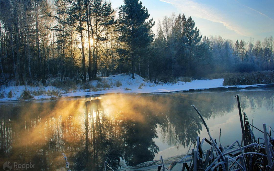 landscapes nature winter snow wallpaper