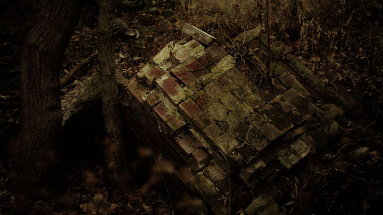 forests grunge bricks wallpaper