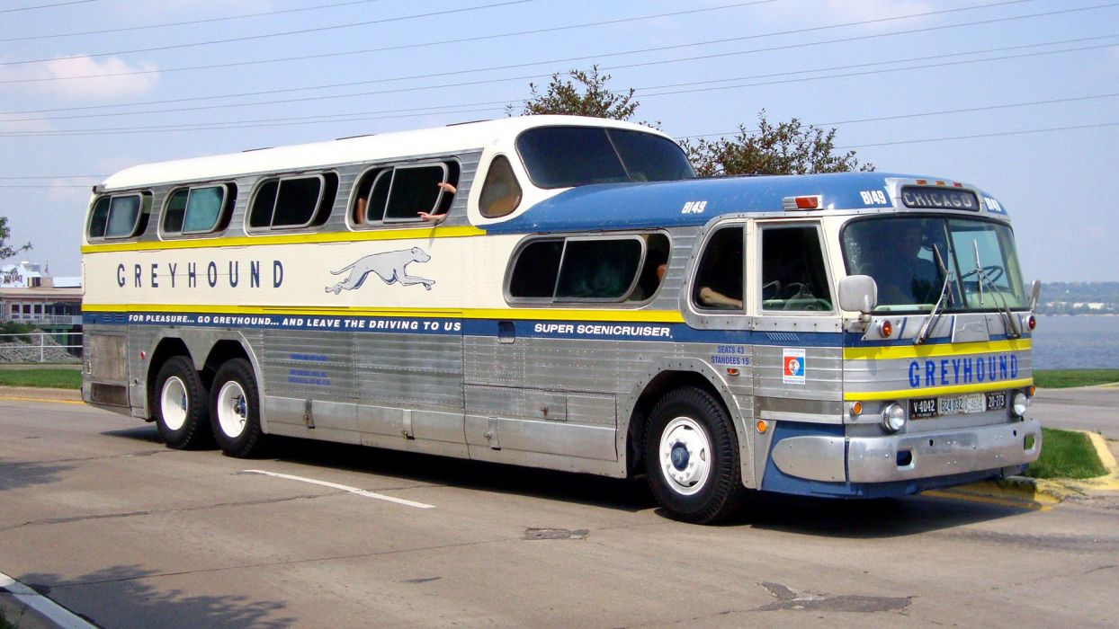 bus Greyhound Bus wallpaper
