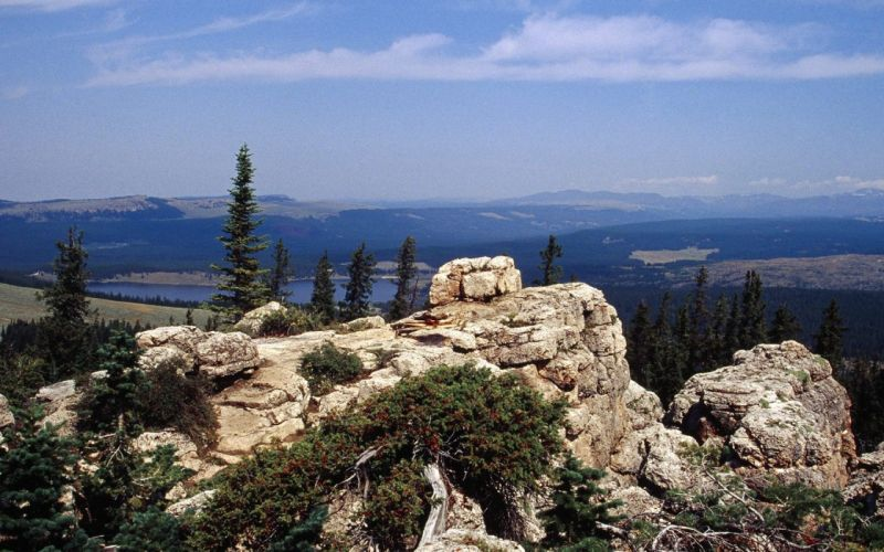 landscapes nature forests national Wyoming wallpaper