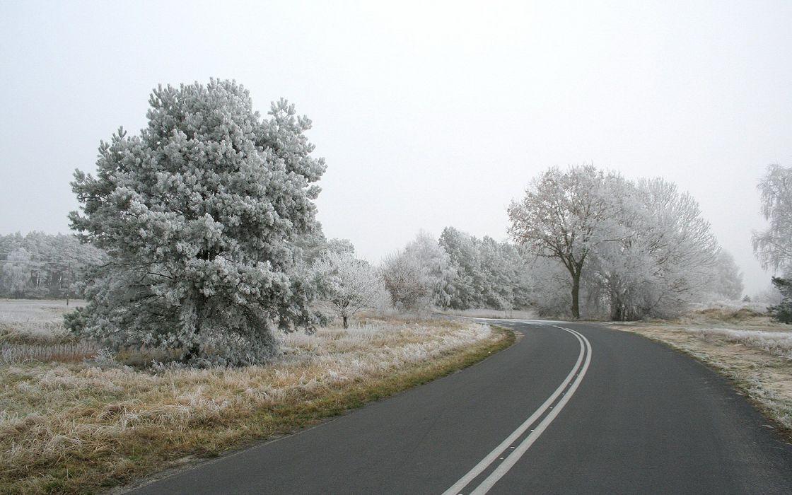 landscapes nature roads frost wallpaper