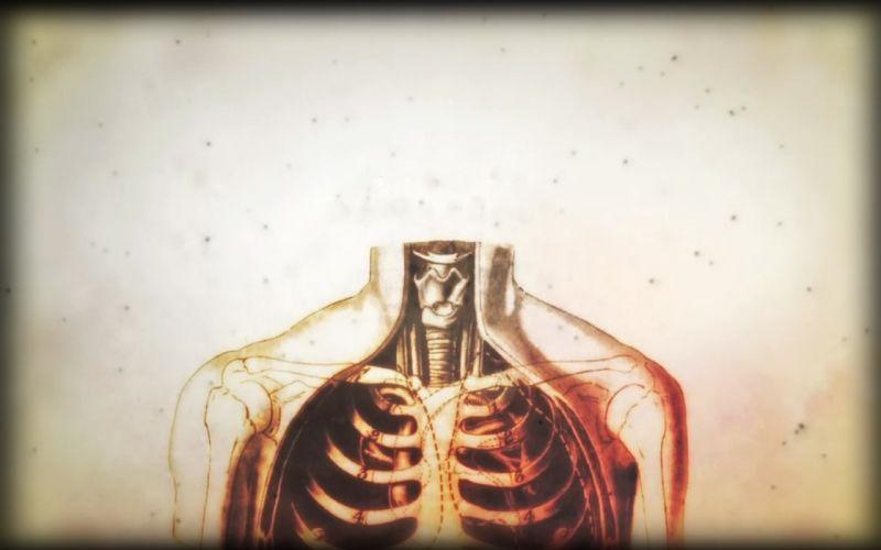 anatomy human body House M_D_ wallpaper