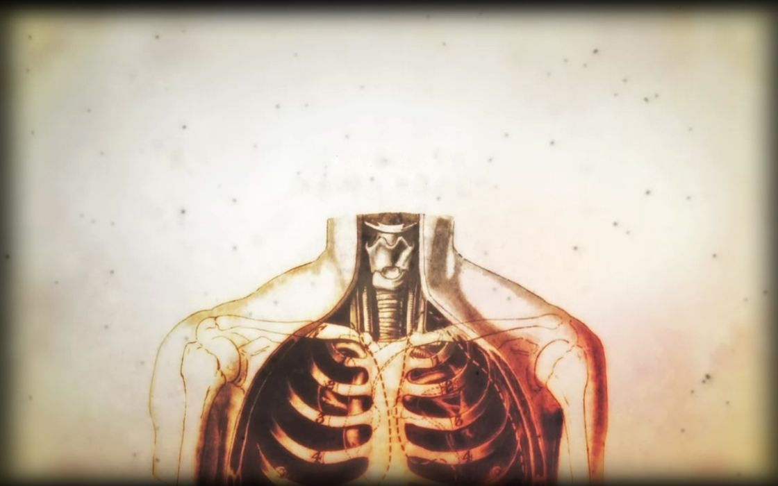 Anatomy Human Body House Md Wallpaper 1680x1050 209973