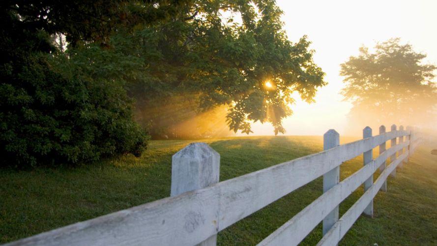 sunrise tranquility wallpaper