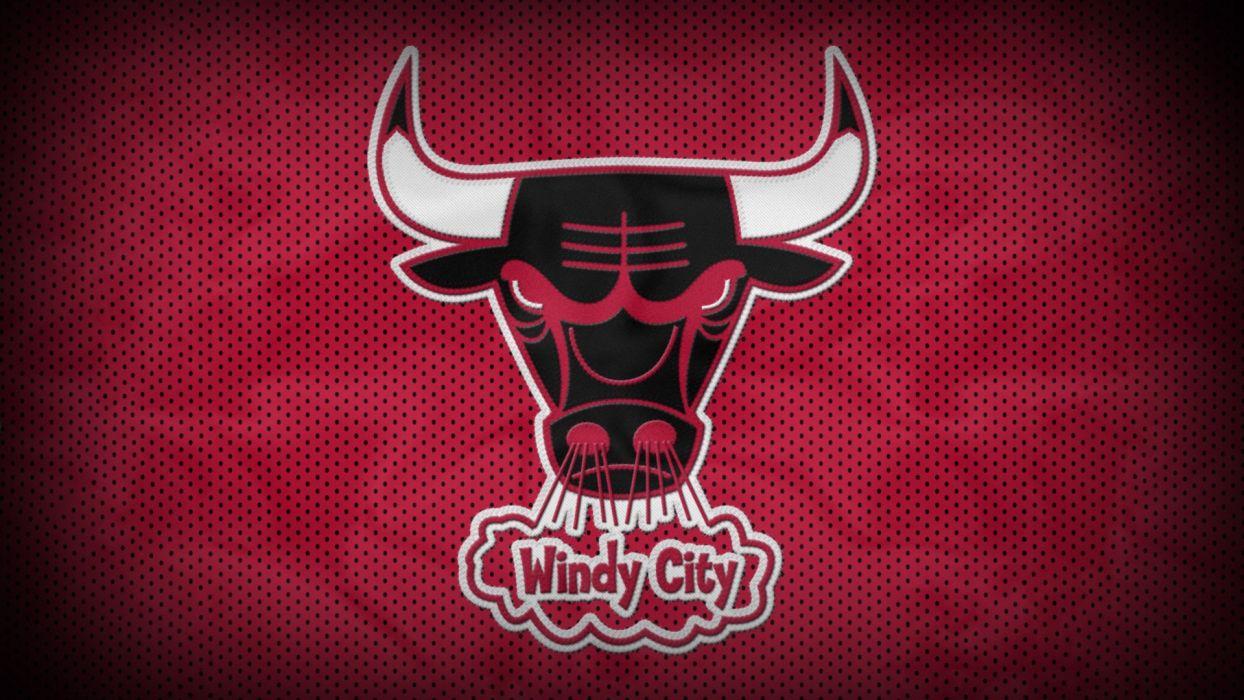 NBA basketball bull Chicago Bulls wallpaper