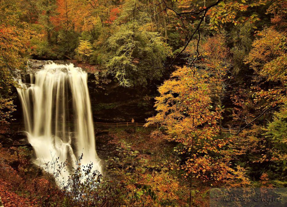 autumn forest river waterfall wallpaper