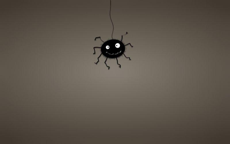 black cobweb spider dusky background wallpaper
