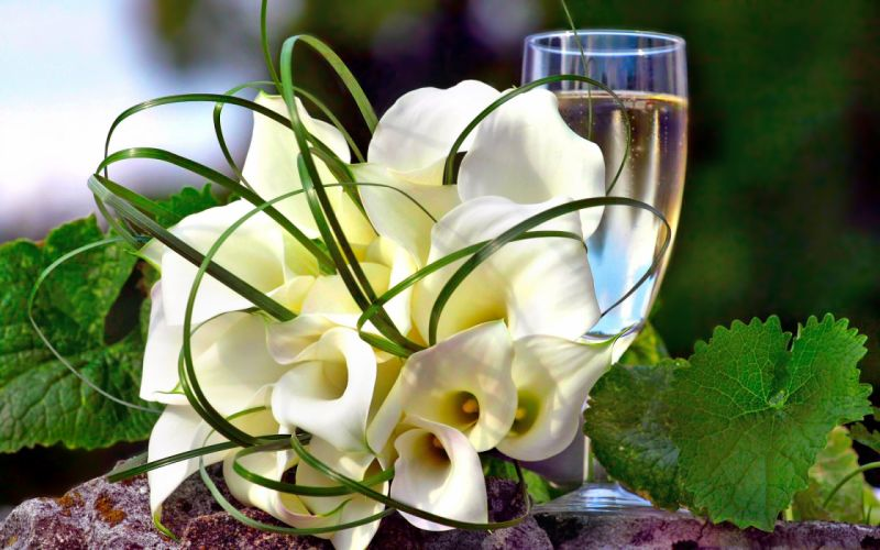 flowers flower glass wallpaper