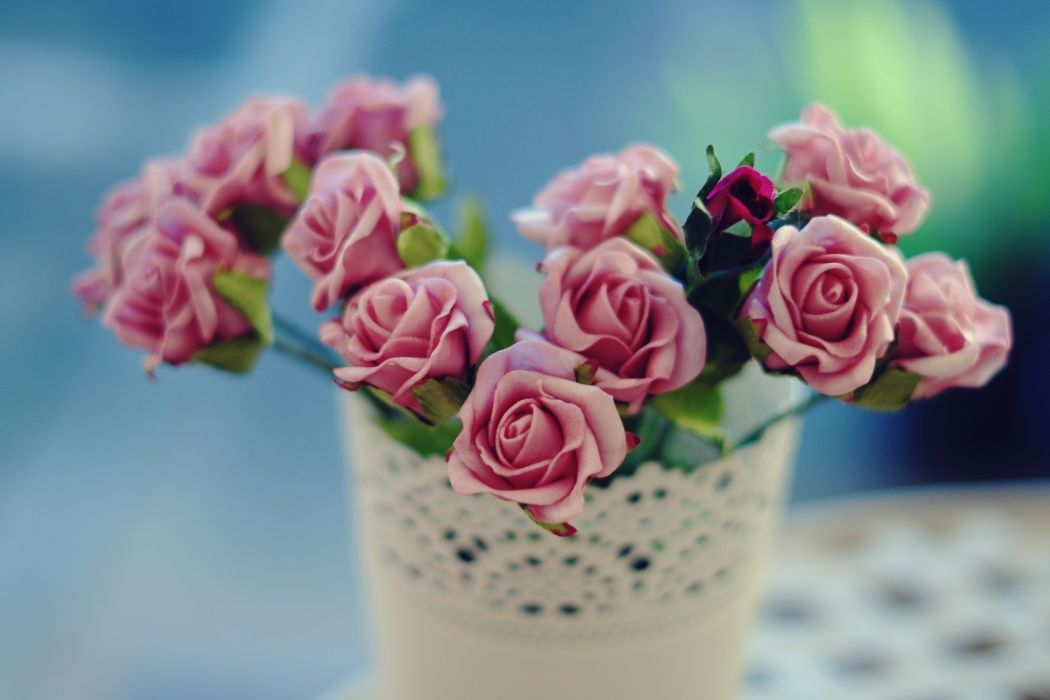 flowers rosette rose flowers roses wallpaper