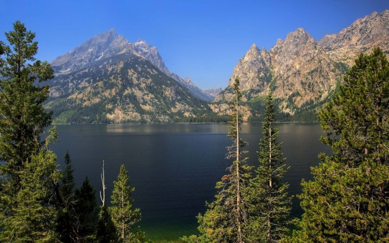 Grand Teton National Park Jenny Lake lake mountains trees landscape wallpaper