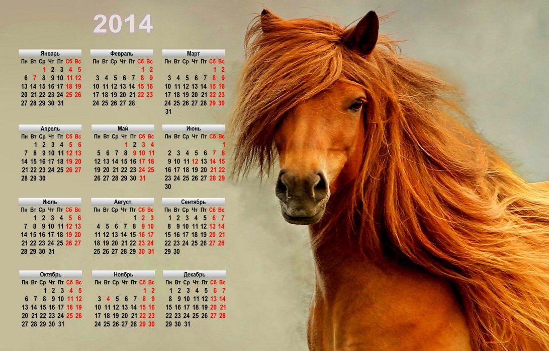 holiday new year calendar symbol 2014 horse wallpaper