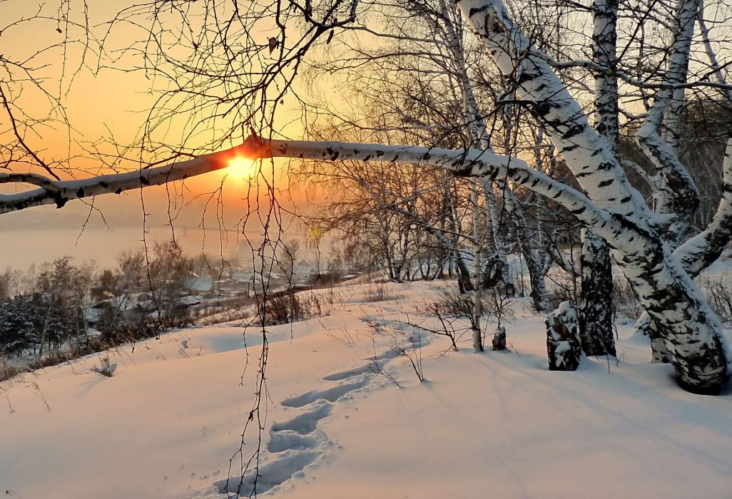 Landscape Nature Winter Morning Dawn Snow Footprints Wallpaper