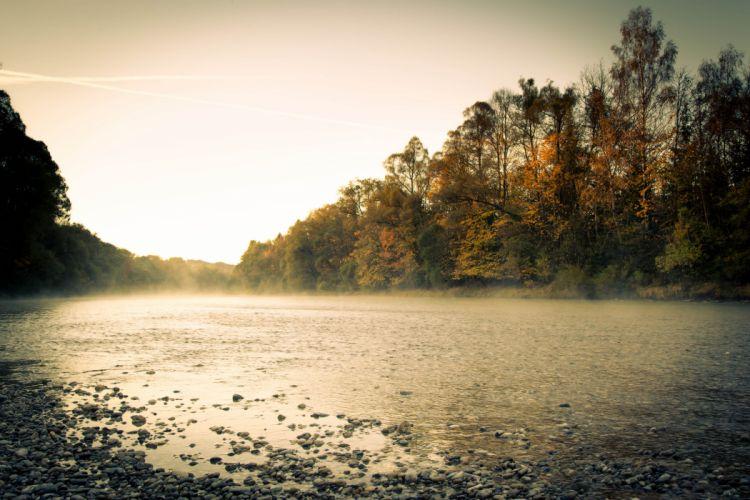 morning river fog forest autumn wallpaper