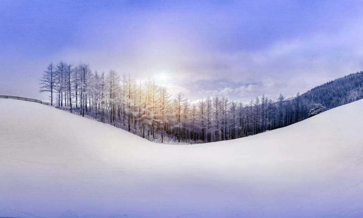 nature sky forest snow hill winter wallpaper