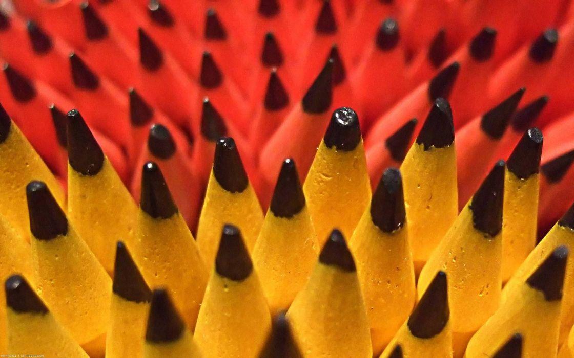 pencils pencil wood wallpaper