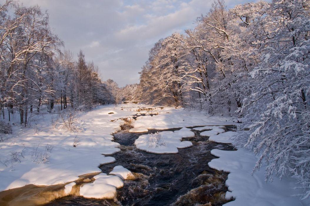 river winter trees landscape wallpaper