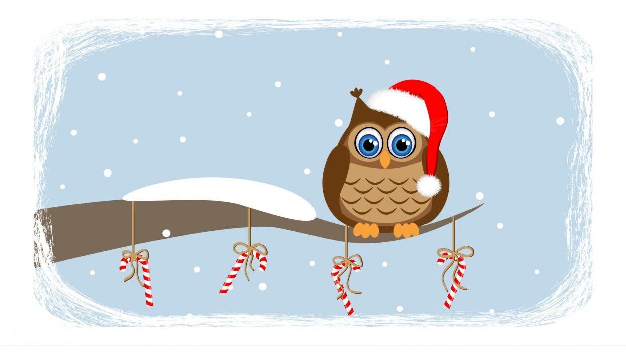 waiting owl snow wallpaper