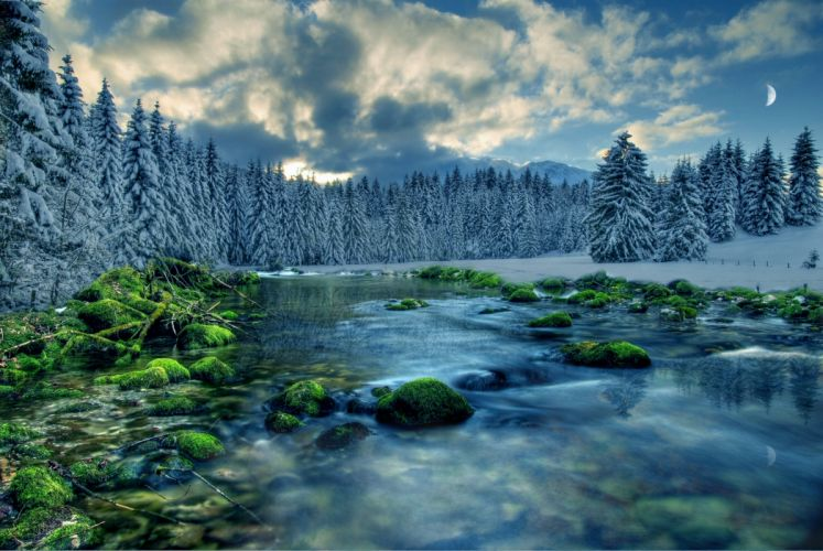 winter river rocks moss trees landscape wallpaper