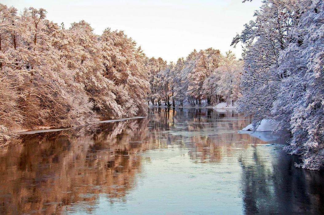 winter river trees nature  e wallpaper