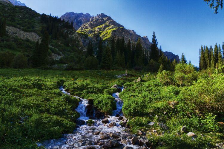 Mountains Scenery Kyrgyzstan Tian Shan Stream Grass Nature wallpaper