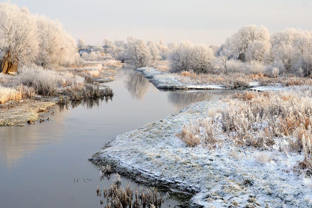 Seasons Winter Lithuania Snow Nature wallpaper