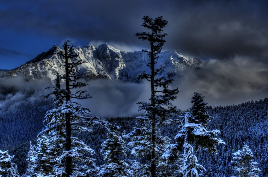 Seasons Winter Mountains Forests Scenery Nature wallpaper
