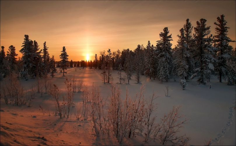 Seasons Winter Sunrises and sunsets Snow Nature wallpaper